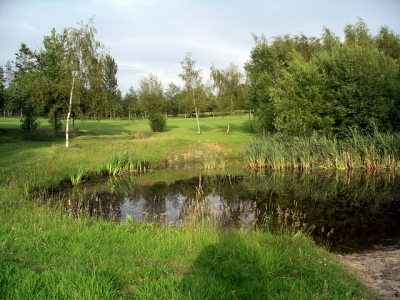 pond-ormonde-fields-golf-course-188447