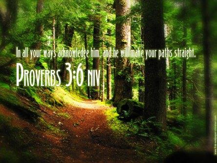 proverbs-36_2821_1024x768
