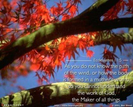 ecclesiastes11_5
