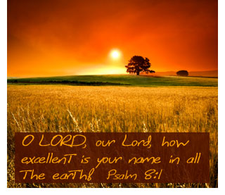 psalm8-how-excellent-your-name0