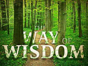 way of wisdom the_t_nv