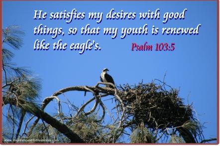 Psalms103.5
