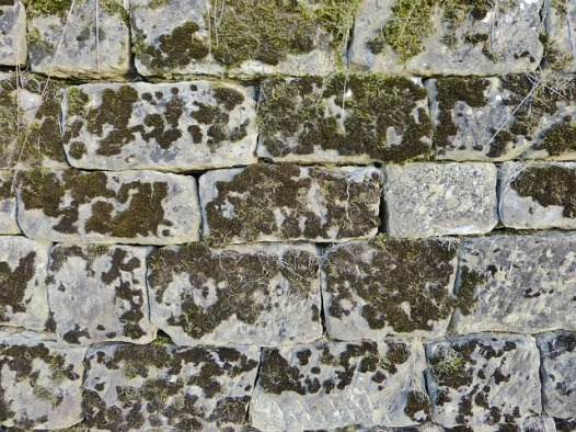 Stone_mold