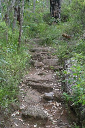 Rocky_pathway