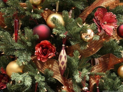 Close-Up-Christmas-Tree-570268