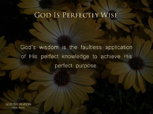 Pilgrims-Rock-gods-wisdom-is-faultless-application-of-his-perfect-knowledge-300w