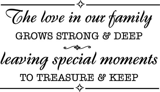 WA264_Love_of_our_family_wall_quotes_words_letters_sayings_decals