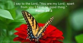 psalms-16-2