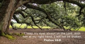 psalms-16-8